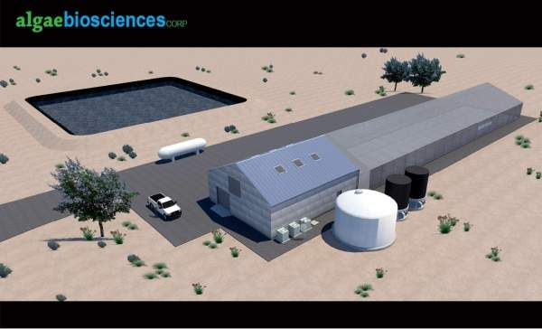 Architect's rendering of the Algae Biosciences production facilities after the first-phase of expansion. Image courtesy of Algae Biosciences.