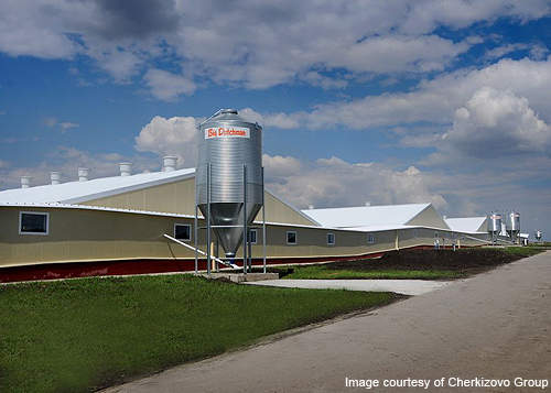 Russian meat producer Cherkizovo Group is developing a new poultry complex in Elets city in the Lipetsk region of Russia.
