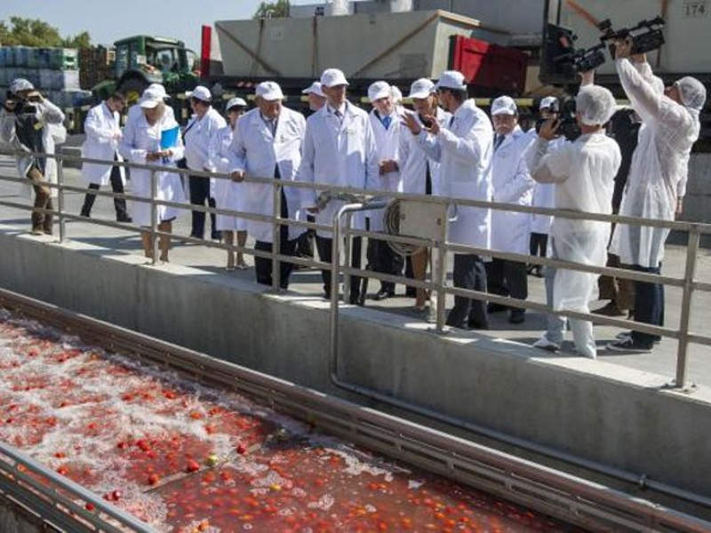 Univer completed upgrades to its Kecskemét tomato processing plant in August 2017. Image courtesy of Univer Product Zrt.
