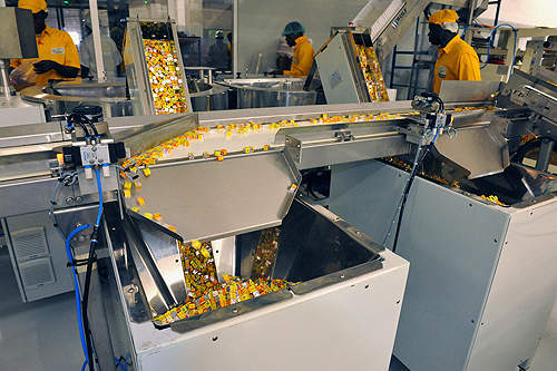 The plant is dedicated to the production of Maggi products.
