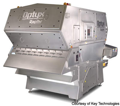 The Optyx Raptor system has visible/infrared cameras to detect even small defects in a product.