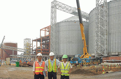The 50,000t per year capacity storehouse system during construction.