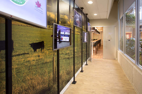 Hallway leading to the Centre of Excellence. Image: courtesy of Canada Beef.