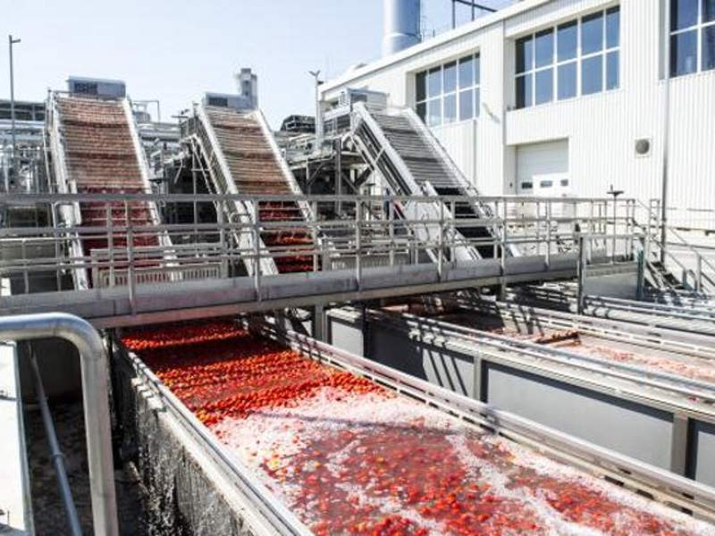 The modernised tomato processing factory is capable of processing 140,000t of tomatoes a year. Image courtesy of Univer Product Zrt.