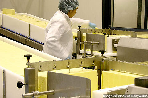 The plant's current capacity is 100t of bulk cheese a week.
