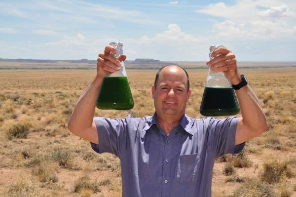 President and co-founder of Algae Biosciences Andy Ayers. Image courtesy of Algae Biosciences.