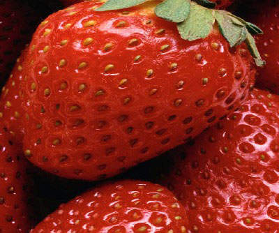 Only the finest strawberries are used in the strawberry flavour.
