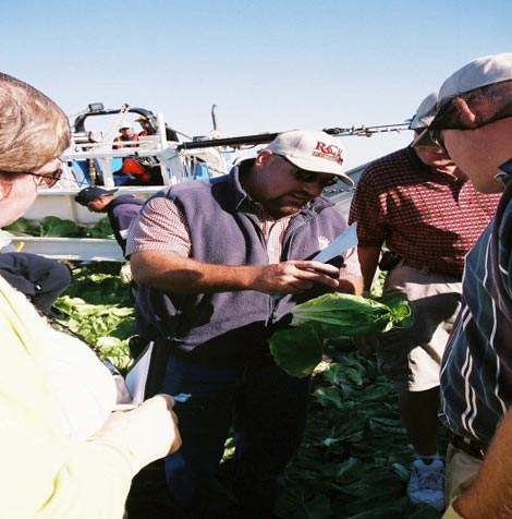 Dole representatives negotiating with North Carolina growers.