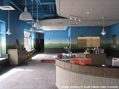 A new Dairy Sales Bar is built as part of the upgrade on the SDSU campus.