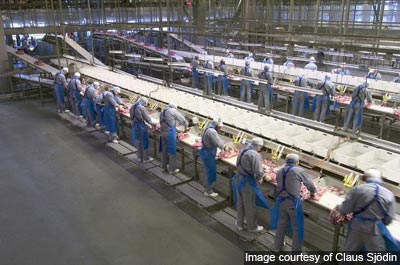 The new plant is believed to be the largest pork processing facility in the world.