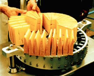 Cheese wedges being inspected for quality before packaging