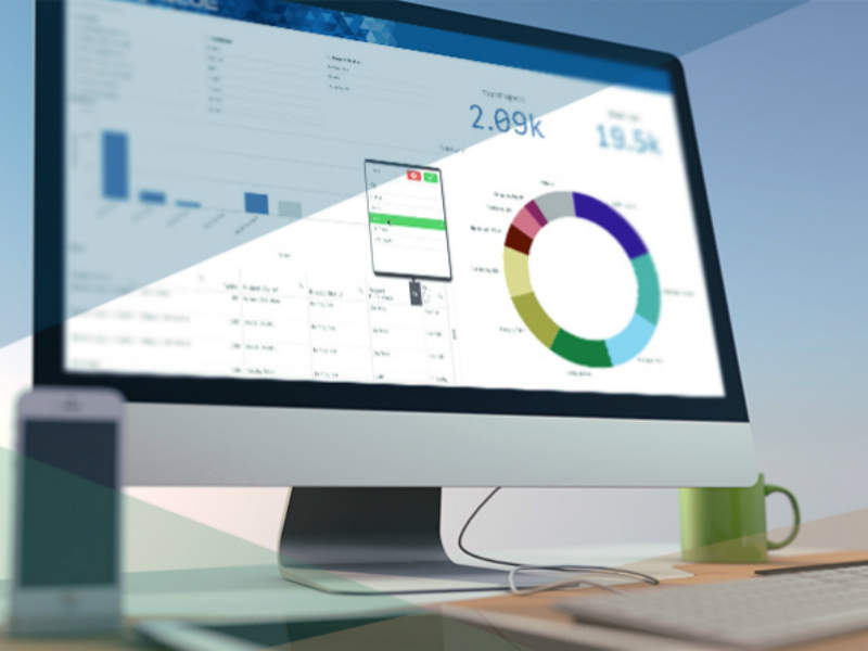 Role of Software Increase in Business Growth - Nuvolari Web