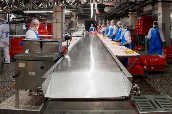 Sandvik - Food Processing Technology