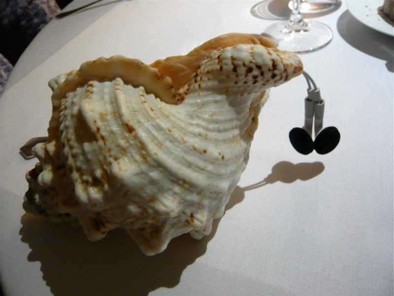 fat duck, conch, shell, earphones, food