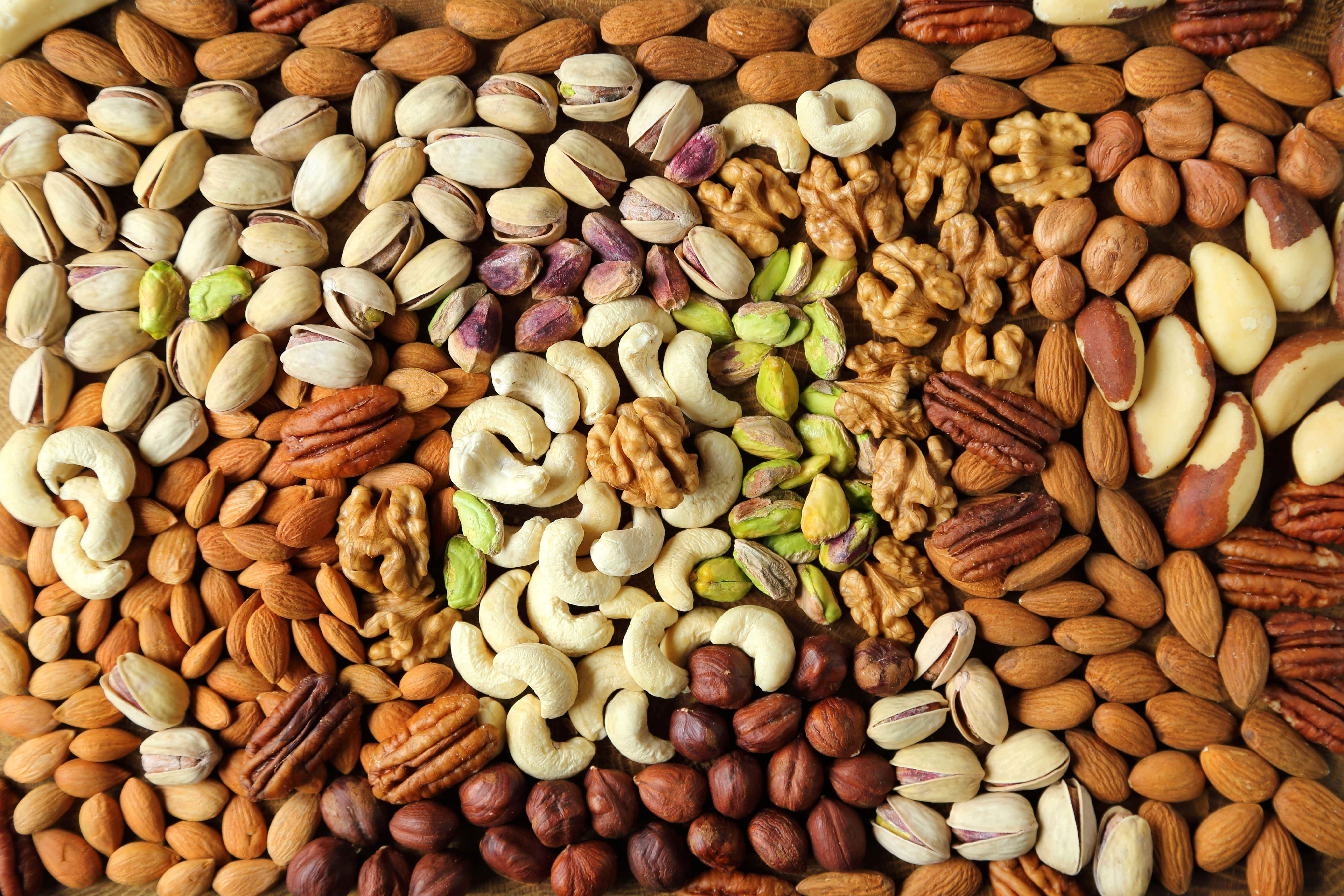 Rise Credit >> Are nuts a healthy alternative for free-from diets? - Food Processing Technology