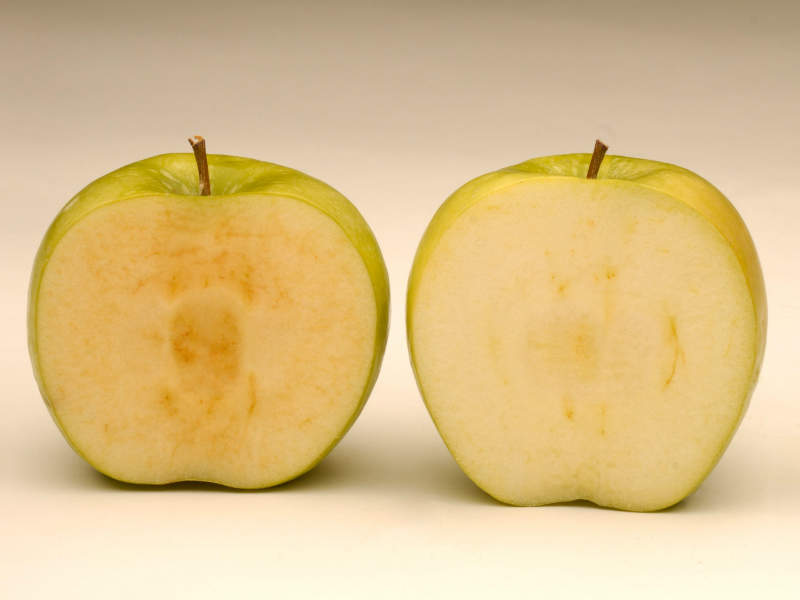 Arctic apple original vs arctic