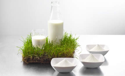 Uelzena offers high-quality food ingredients and expertise in the milk fat processing sector of the food industry.