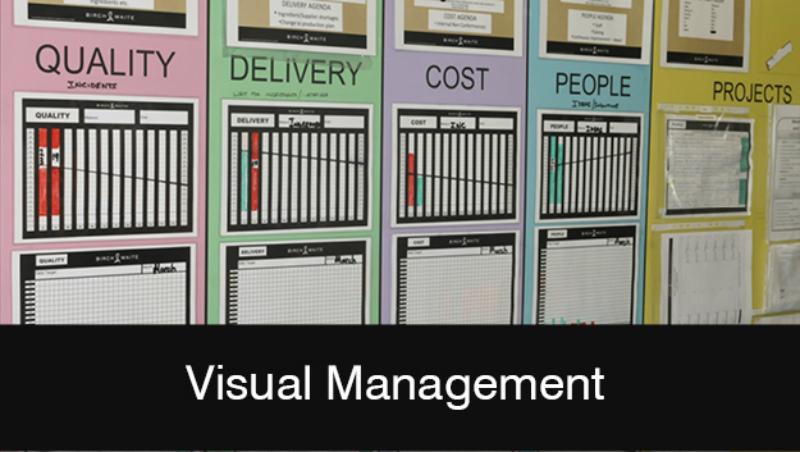 visual management training