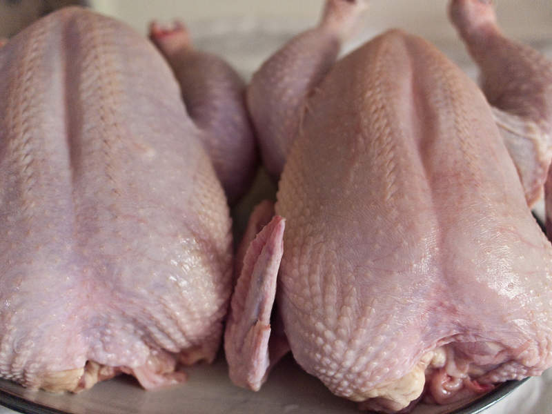 The new Benton County facility will produce fresh and frozen chicken products. Image courtesy of Edsel Little.