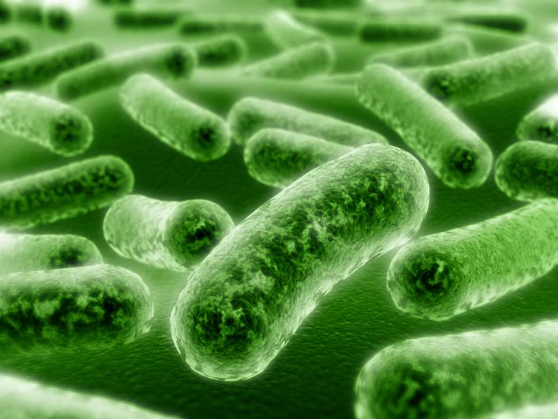 kills microorganisms