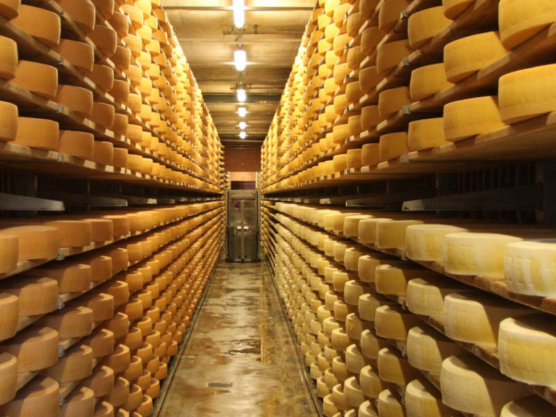 The new cheese ripening rooms will aid in the development of new products. Image courtesy of Richard Allaway.