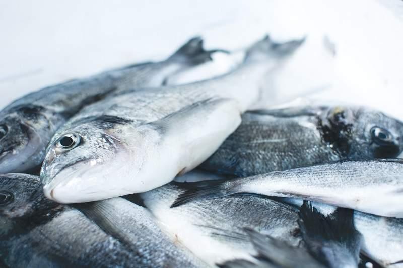 Joyvio salmon