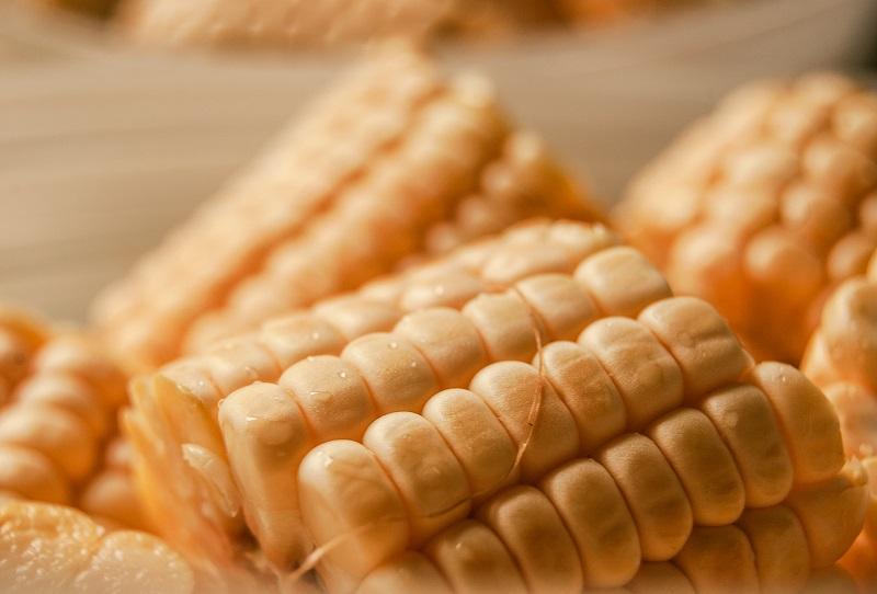 Tyson Foods corn