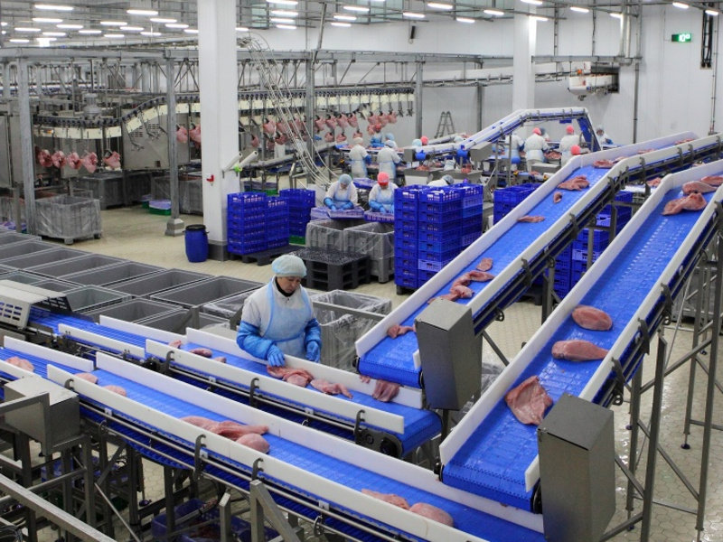 Damate's turkey processing plant has a processing capacity of 155,000t a year. Image courtesy of Ministry of Agriculture of the Russian Federation.