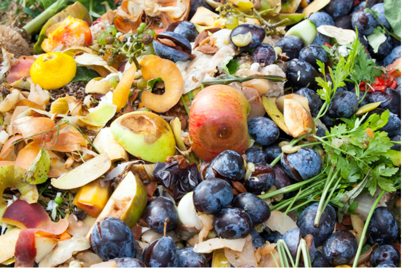 Upcycling food waste