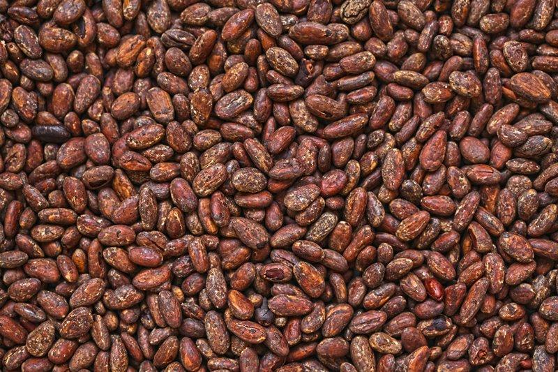 Cargill cocoa