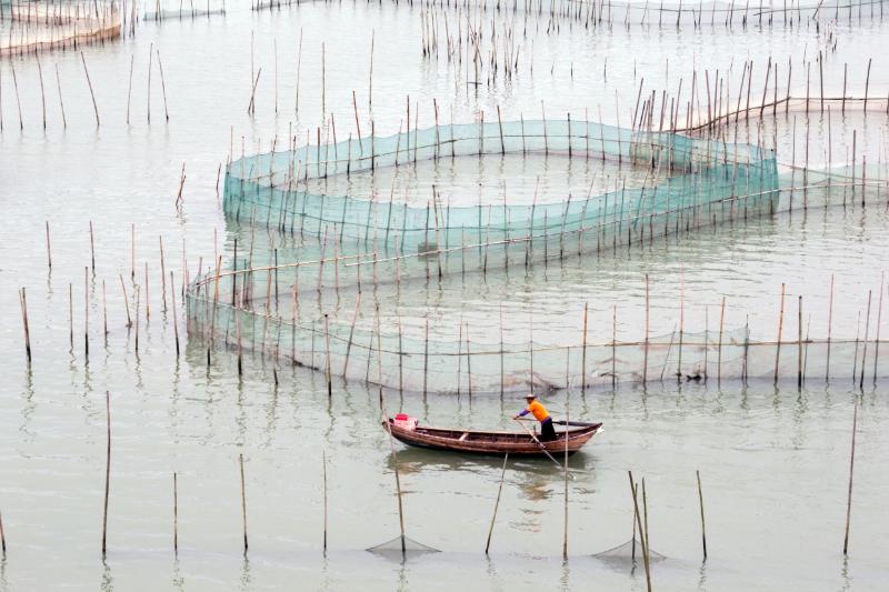 covid-19 aquaculture