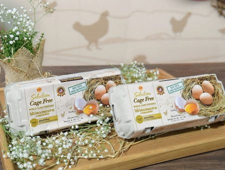 Thailand's CP Foods to double production of cage-free eggs