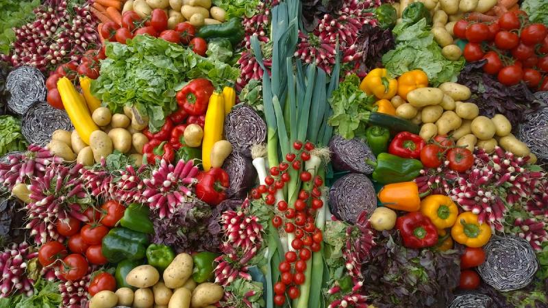 fda food safety