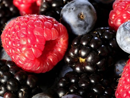 Canada's Fruit d'Or acquires US-based Decas Cranberry Products