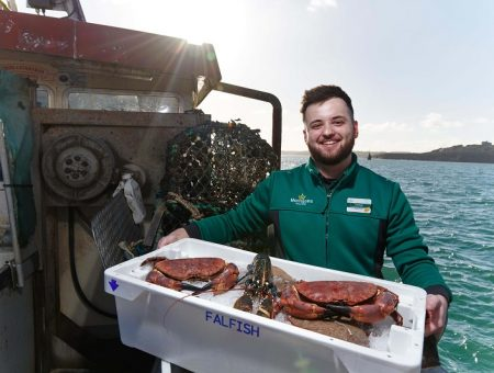 Morrisons acquires Cornish seafood business Falfish