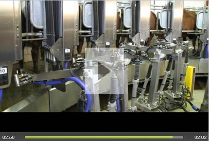 Robotic milking machinery