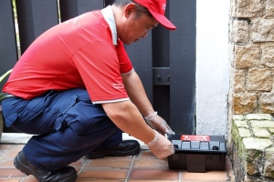 Pest Control Technician in Action Using Roguard